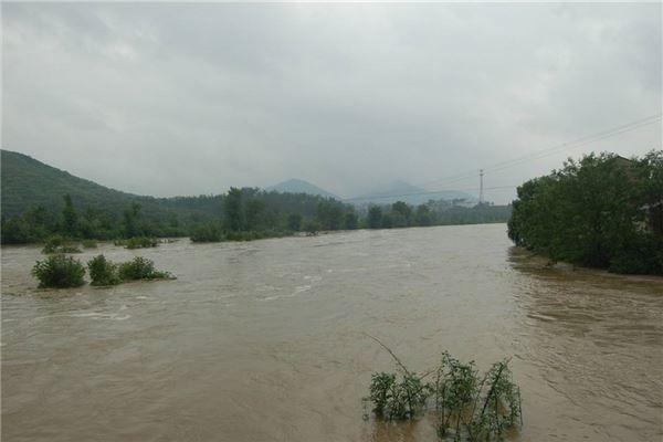 梦见河水涨水有什么寓意